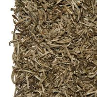 China White Paklum Yin Zhen Tips Bio